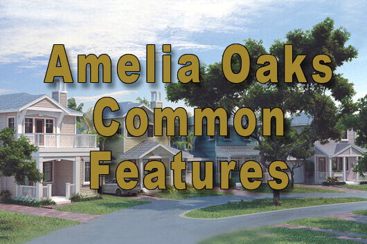 Amelia Oaks Common Features